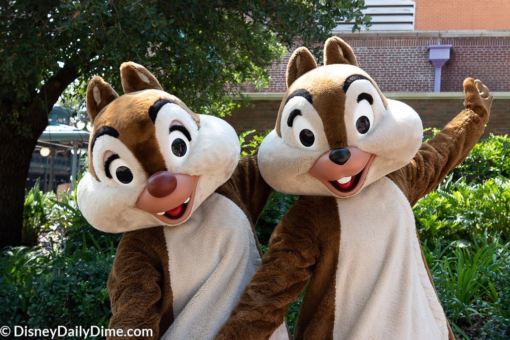 Chip 'n' Dale are just a few of the characters you can meet at Hollywood Studios