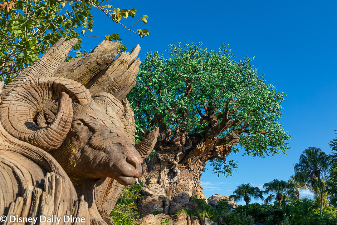 Picture of the Tree of Life and a ram carving at Animal Kingdom.