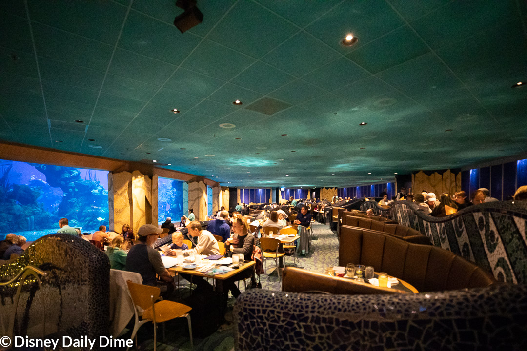 As part of our Coral Reef Restaurant review we had the opportunity to dine with a view of the Sea pavilion aquarium.