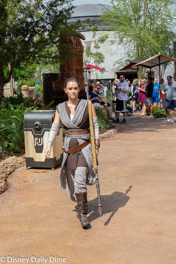 Rey doesn't do formal meet and greets in Hollywood Studios, but she will stop and interact if you find her!