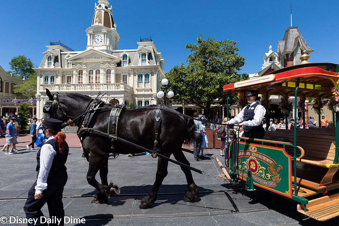 The horse drawn carriage in this picture is one of the various modes of transportation available.